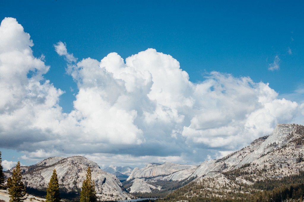 Yosemite 2015-8
