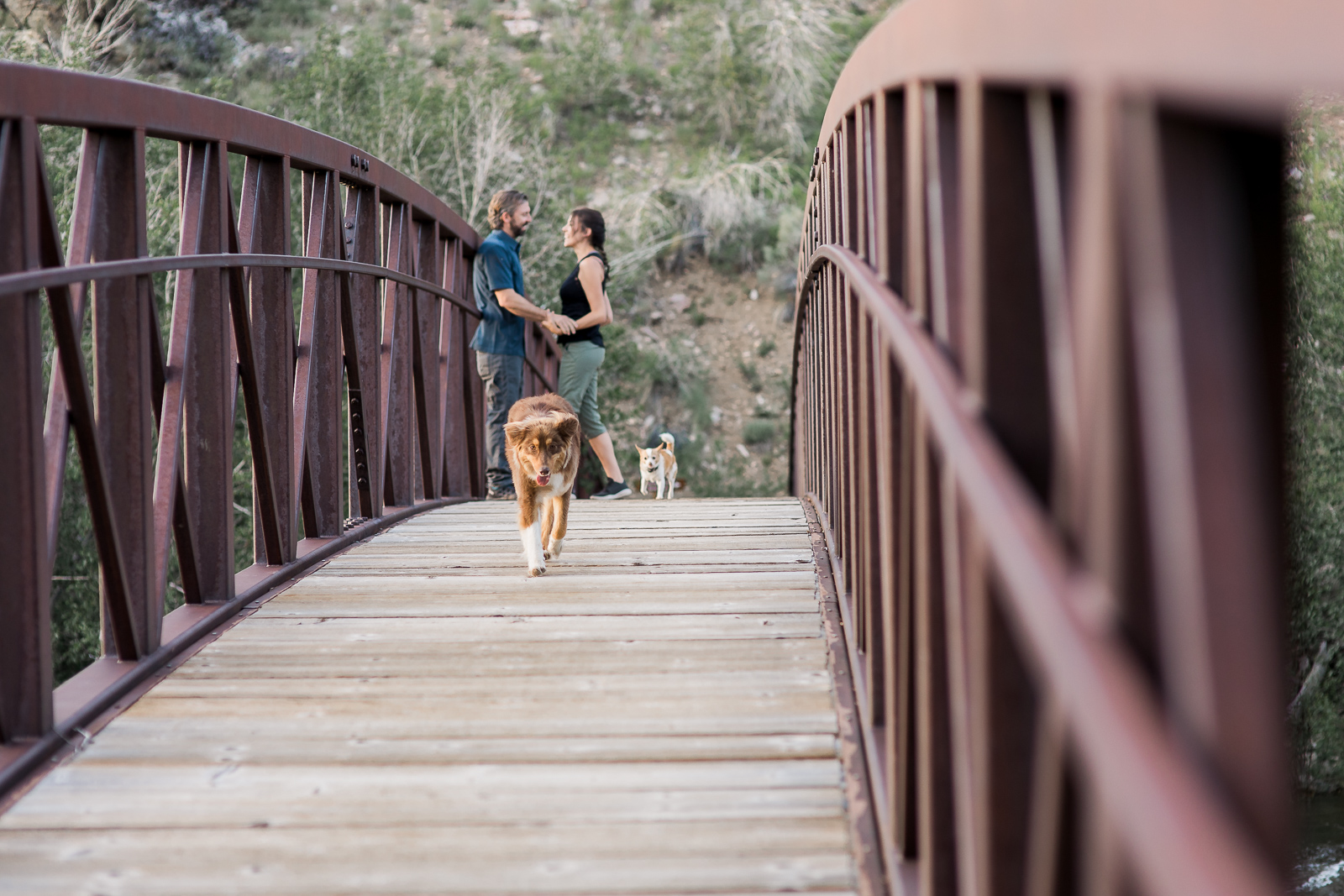 Engagement photography in Wyoming by Laramie based photographer, Encampment Wyoming, couple with dogs