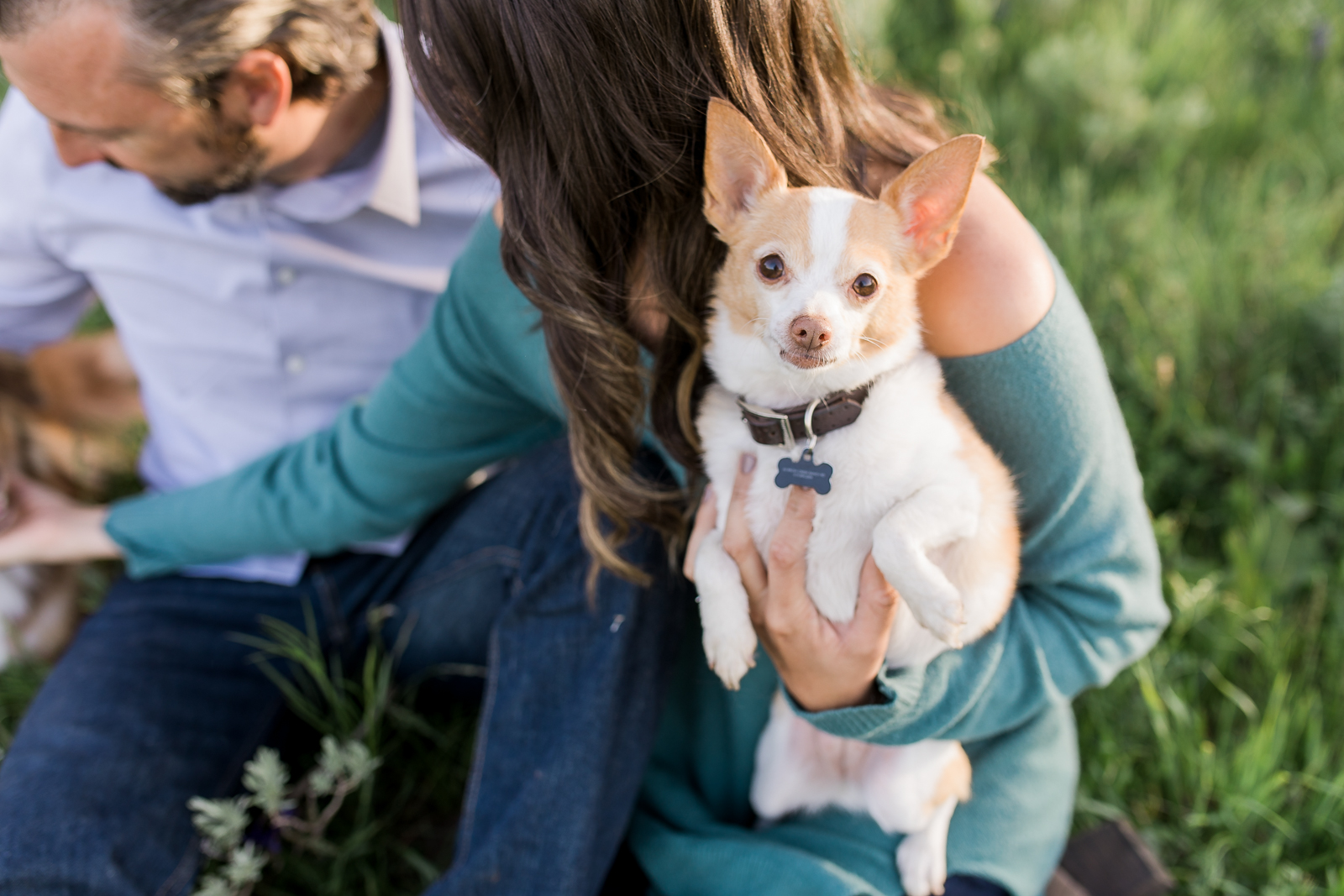 Engagement photography in Wyoming by Laramie based photographer, Encampment Wyoming, couple with dog, chihuahua