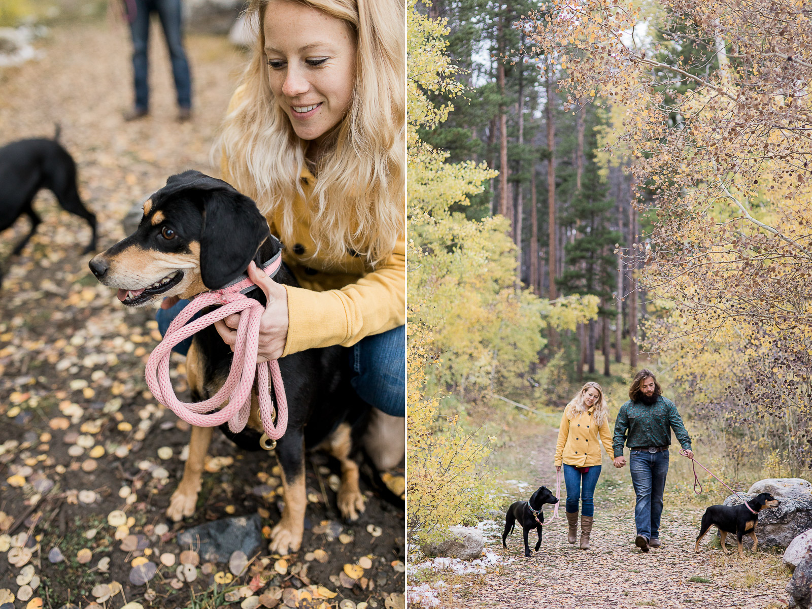 Engagement photography with dogs in Laramie, WY