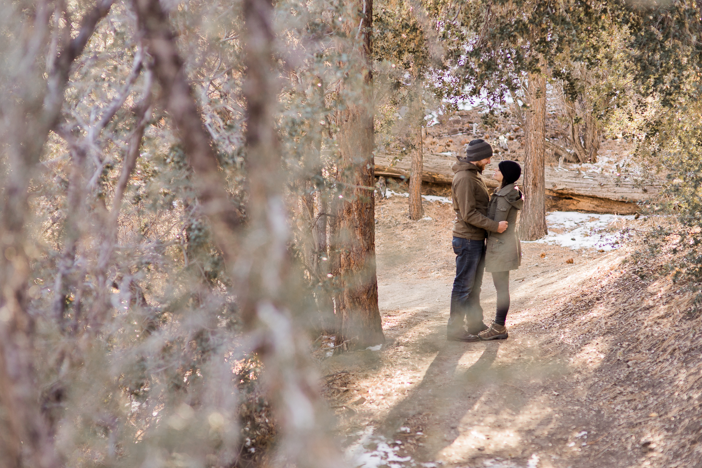 Winter Forest Engagements