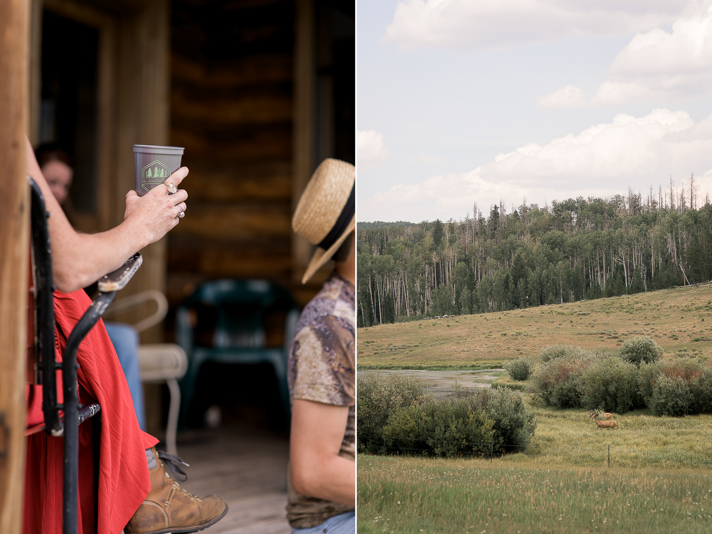 Clark, CO Summer Wedding by Megan Lee Photography