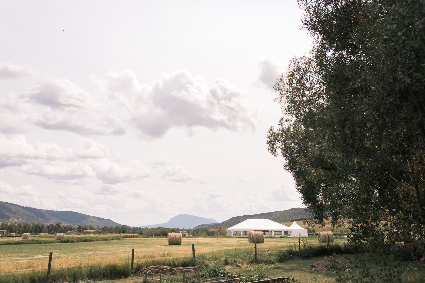 Clark, CO Mountain Wedding by Megan Lee Photography