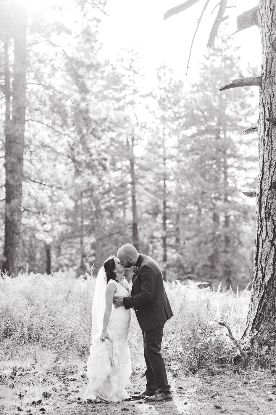 Intimate Camp around Meadow California by Megan Lee Photography